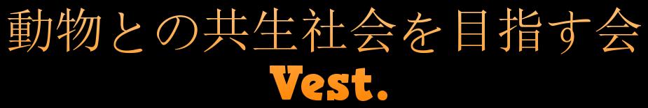 vest-asaka